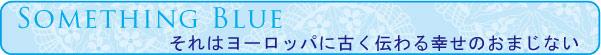 セントブルー 聖なる青 プリザーブドフラワーのガラスウェルカムボード